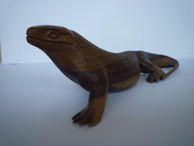 マイク・タイソンを連想 コモドドラゴン Komodo dragon,Indonesia
