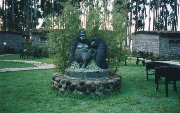 ゴリラのカフェ ,ルワンダ Mountain Gorilla's cafe,Rwanda