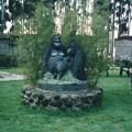 写真: ゴリラのカフェ ,ルワンダ Mountain Gorilla's cafe,Rwanda
