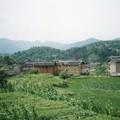世界遺産の周囲は田んぼ、永定土楼  Fujian Tulou in China
