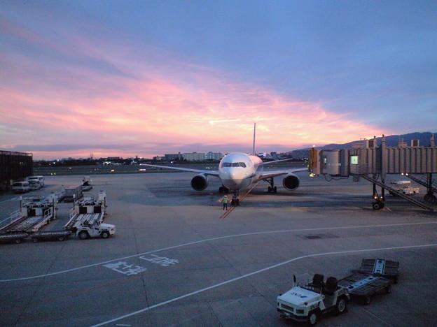写真: 伊丹空港にて