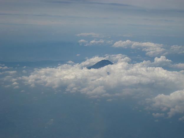 写真: ふじの山