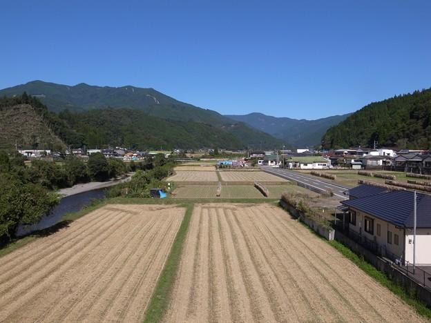 Photos: 稲刈りのあと