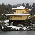 雪の鹿苑寺金閣5