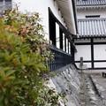 写真: 長浜城歴史博物館2