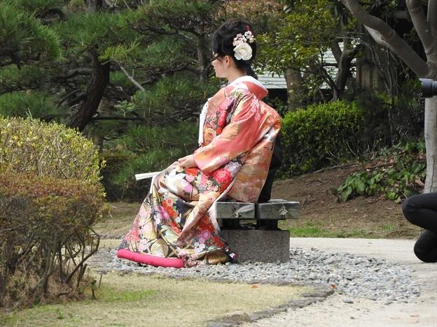 写真: 娘の結婚04 前撮り(色打掛)