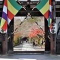 写真: 石山寺10 東大門
