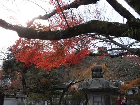 石山寺16 いい感じの紅葉