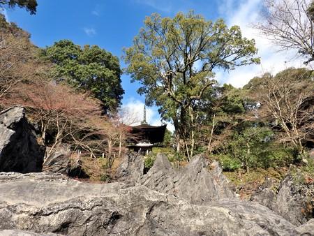 石山寺40 珪灰石の上に見えるは多宝塔