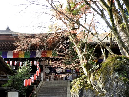 石山寺42 本堂