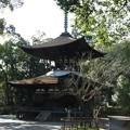 写真: 石山寺63 日本最古の多宝塔―落ち着いた風情