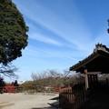 写真: 石山寺78 芭蕉庵と月見亭の間の建物