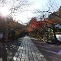 写真: 石山寺124 帰りの参道4