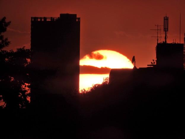 写真: 落陽5