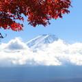 初めての、紅葉と富士山