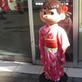 Photos: 迎春@ぺこ170199