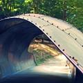 ムーミン谷の橋