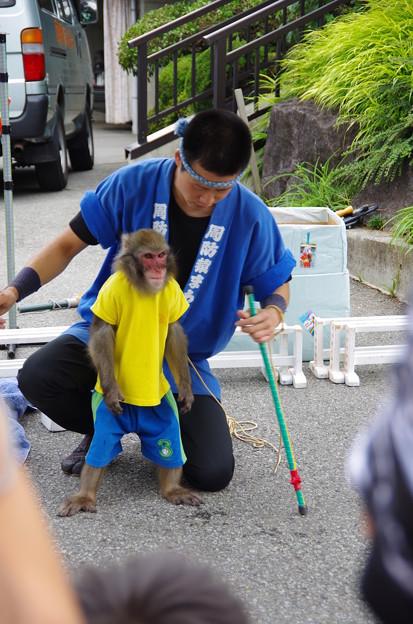 写真: 猿回し