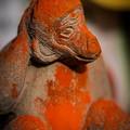 写真: 赤い猿1@三ツ木神社