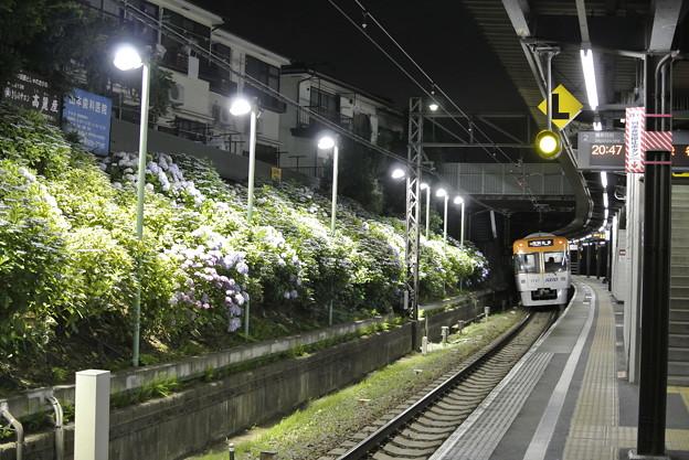 京王井の頭線/東松原