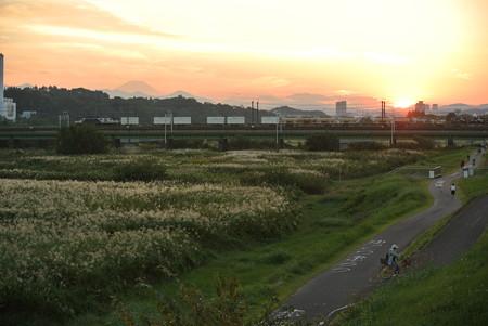 南武線武蔵野線/多摩川橋梁