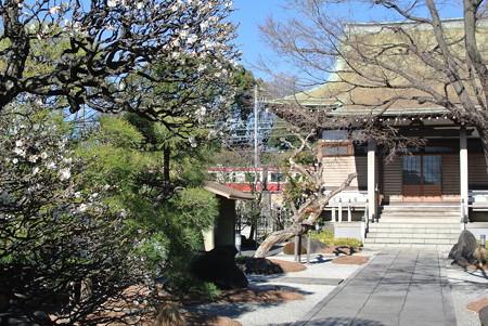 良泉寺/神奈川新町