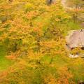 Photos: 鶴ヶ城から見える風景1