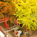 Photos: 鶴ヶ城から見える風景2