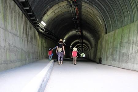 2014.07.29 寸又峡温泉 夢の吊り橋へ寸又峡プロムナード
