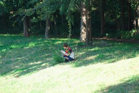 2014.10.16 和泉川 楡の木の下で