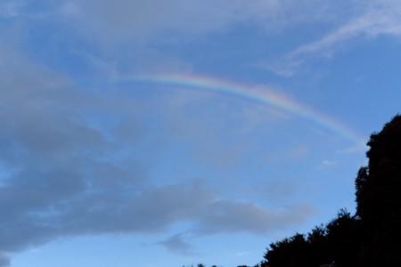 2016.07.31 公園 虹