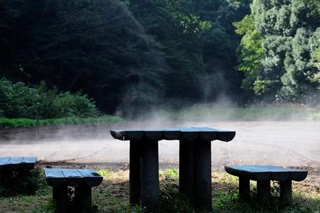 2016.10.18 追分市民の森 おひさま