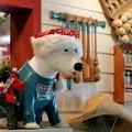 Photos: 2016.12.12 クイーンズスクエア横浜 アット! クリスマス