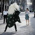 Photos: 2017.01.04 丸の内仲通り 獅子舞 獅子と美女