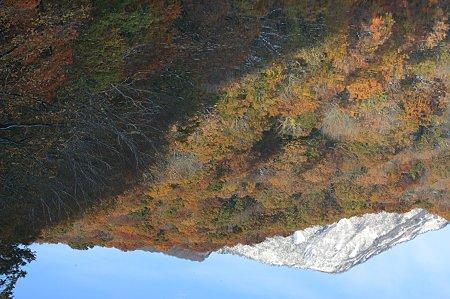 2010.10.28 蔦温泉 蔦沼 沼面へ冠雪の山