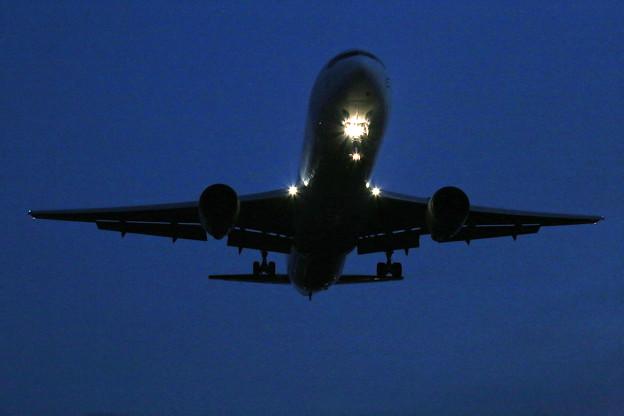 写真: 伊丹空港にて3