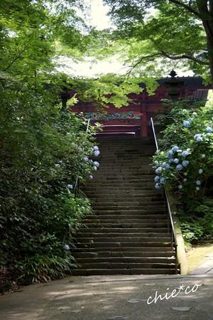 鎌倉-154