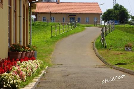 ソレイユの丘-016