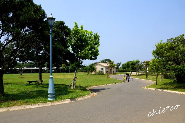ソレイユの丘-132