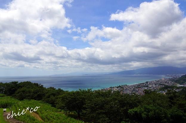 吾妻山公園-117