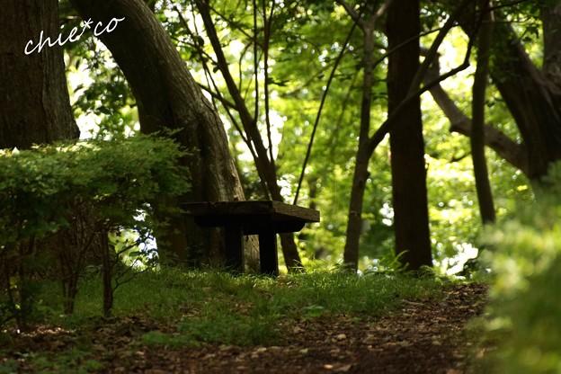 吾妻山公園-035