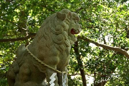 吾妻山公園-145