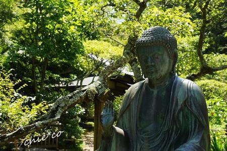 北鎌倉-236