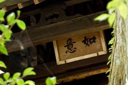 長月の円覚寺-256