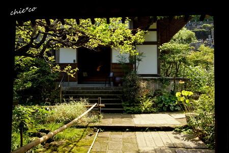 長月の円覚寺-257