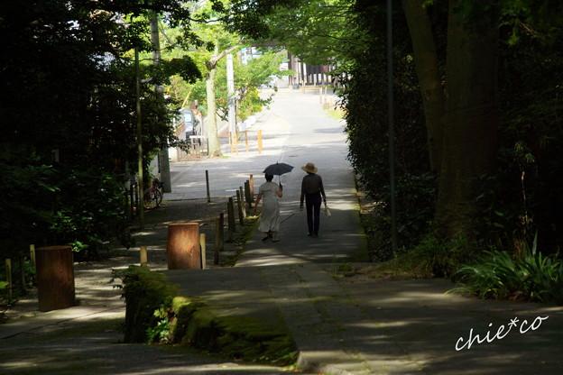 鎌倉-197