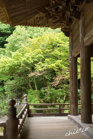 鎌倉-206