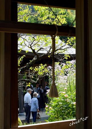 鎌倉-287
