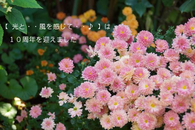 DSC09057-002