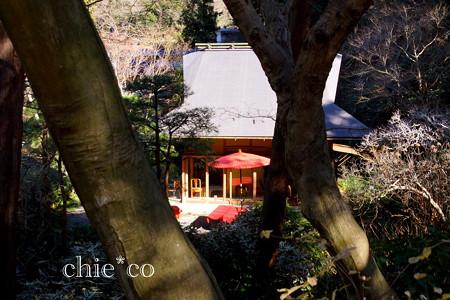 初春の鎌倉-231